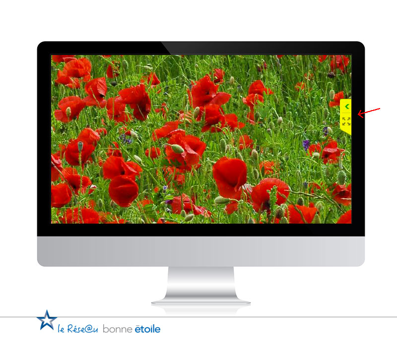 Teamviewer mandataire immobilier